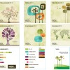 Brand Development – Tree Concept