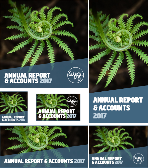 WYG Annual Report & Accounts 2017